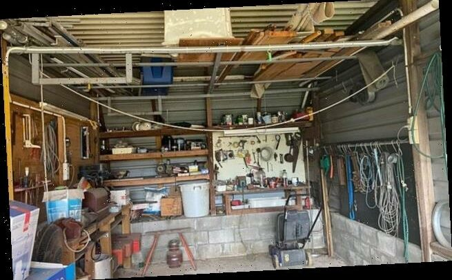 Can you ssspot the snake? A python is hiding in this Australian garage