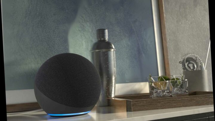 Amazon Has More Echo Speakers Than Ever — Here Are the Best Ones to Get Right now