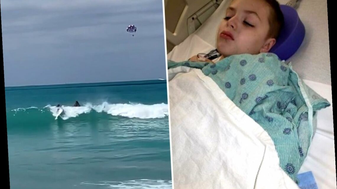 Boy, 9, attacked by shark as mum pulled him from water when she saw chunk of skin missing from his shoulder