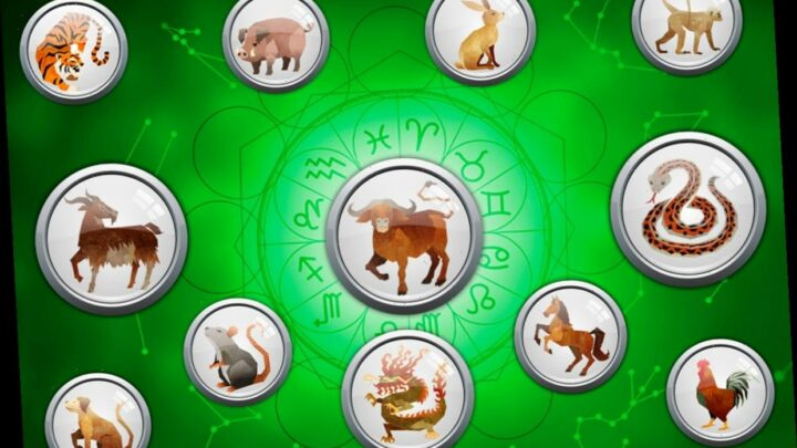 Daily Chinese Horoscope Friday March 5: What your zodiac sign has in store for you today