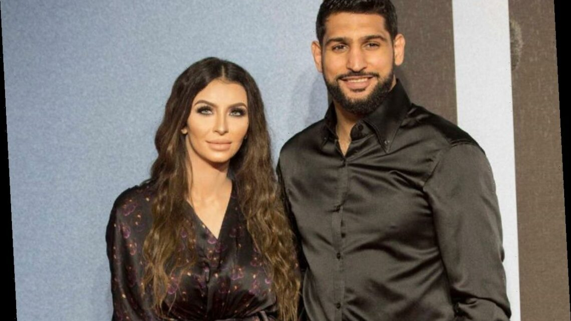 Who is Faryal Makhdoom and how many children does Amir Kahn's wife have? – The Sun