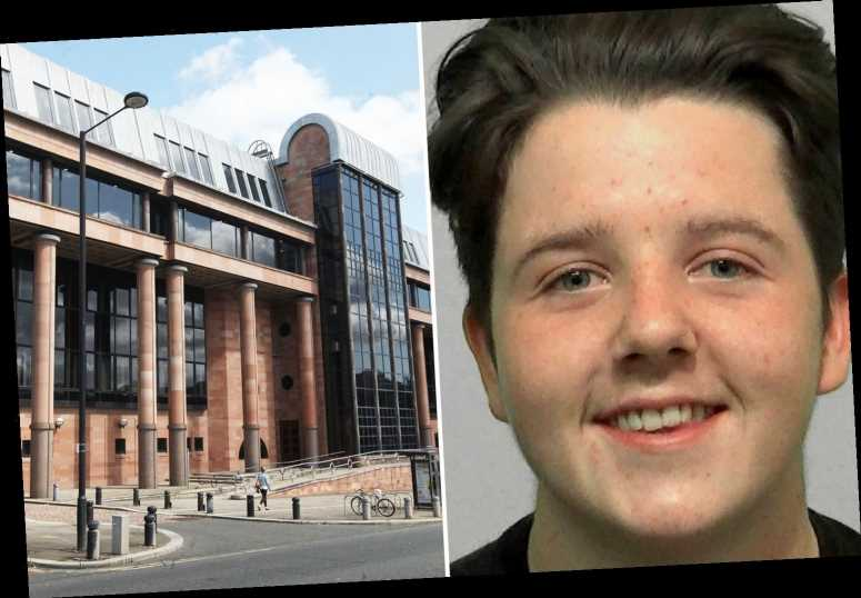 Baby-faced teen stabbed cyclist in back while chasing him with pals like 'pack of hounds' before smirking in mugshot