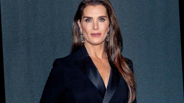 Brooke Shields needed 3 transfusions, multiple rods after breaking femur