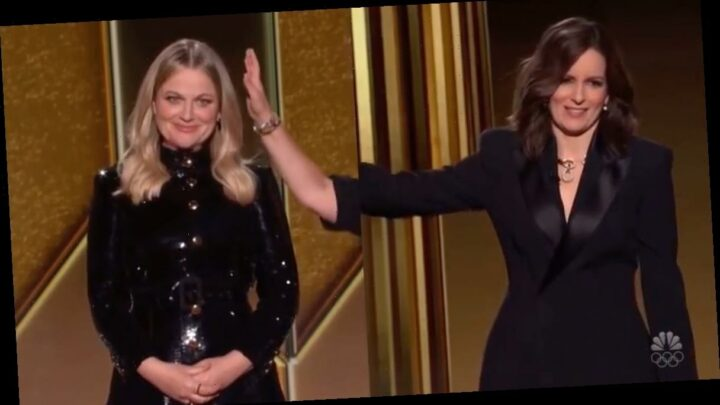 Makeup Pro Molly Stern Reveals She Was the Mystery 'Arm Model' Petting Amy Poehler at the Golden Globes