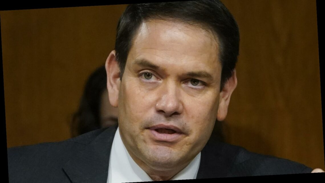 Marco Rubio's Outrage Over Biden's 'Neanderthal' Comment Seriously Backfires