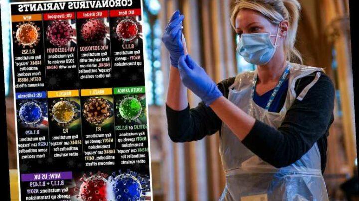 Fears Brazilian variant could DELAY lockdown lift as new strain 'breaks through' antibodies