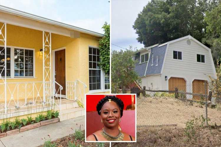 BLM founder branded a 'fraud' for blowing millions on property empire including $1.4m home in mostly white neighborhood