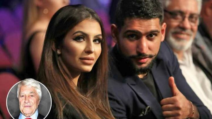 Despite all Amir Khan's benevolence, I believe he has tarnished image with eight-episode BBC show Meet The Khans