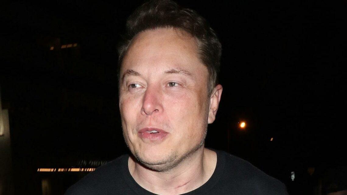 Elon Musk Denies Autopilot to Blame for Fatal Tesla Crash in Texas