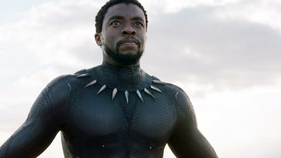 Honor Chadwick Boseman by Recasting T'Challa, Rising Petition Argues
