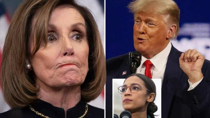"Nancy Pelosi told to 'retire grandma' after speaker 'rips AOC's ""squad"" and Trump' in explosive new book"