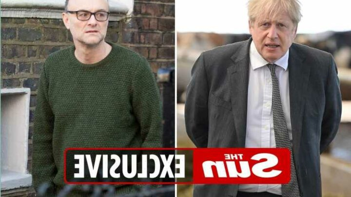 No10 fear axed aide Cummings will publish texts exposing chaos at the heart of Government's Covid battle