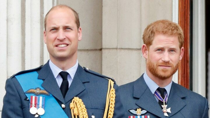 Prince Harry & Prince William Have Been in Touch by Phone, Source Says