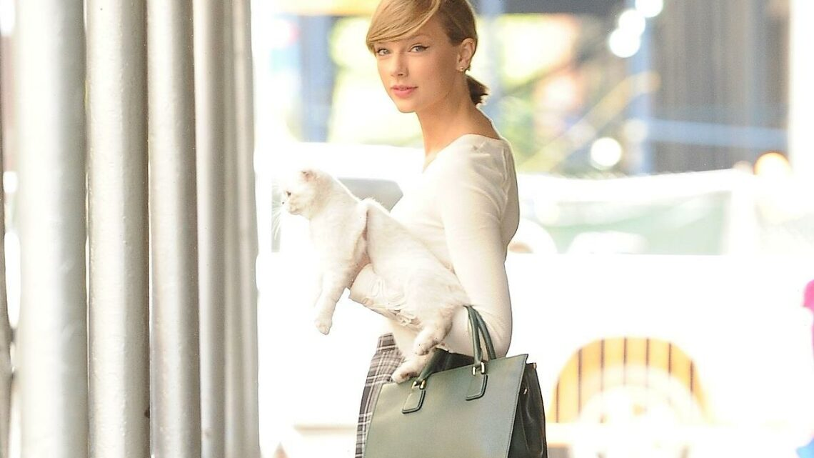 Taylor Swift Finally Clears up 'a Very Pressing Issue': The Whereabouts of Her Cat, Meredith