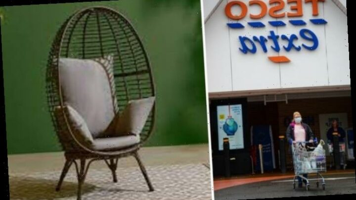 Tesco launches £150 egg chair similar to Aldi sell-out version – but you must be quick