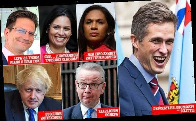 Gavin Williamson for Defence Secretary? Absurd! writes ALAN DUNCAN