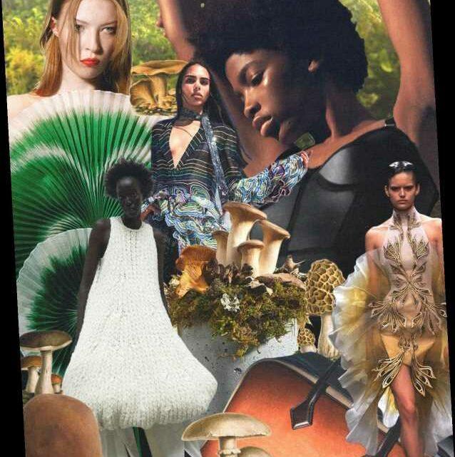 Is Mushroom Leather the Future of Sustainable Fashion?