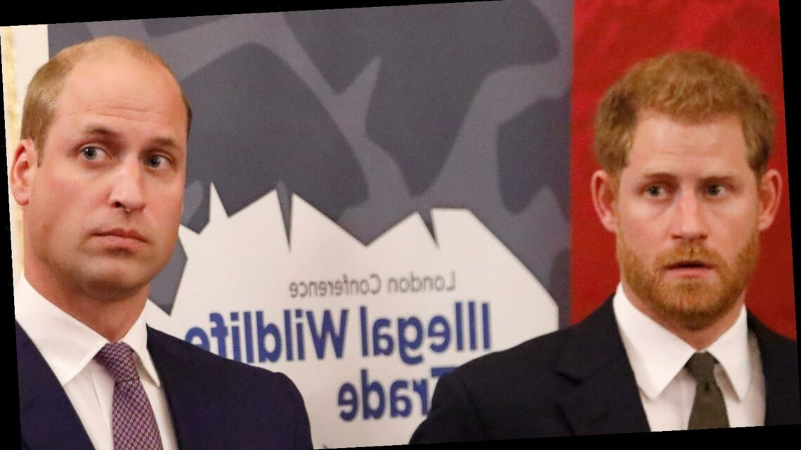 Prince William Reportedly Thinks Prince Harry's Ego Is Out Of Control