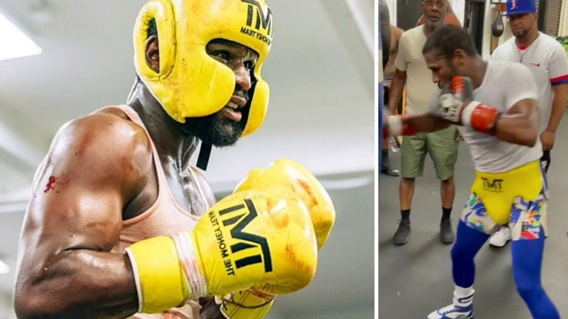 Floyd Mayweather splattered with blood as boxing legend, 44, trains for Logan Paul fight