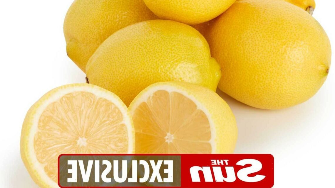 Home cooks and bakers will be cheering for joy as guaranteed seedless lemons hit supermarket shelves for the first time