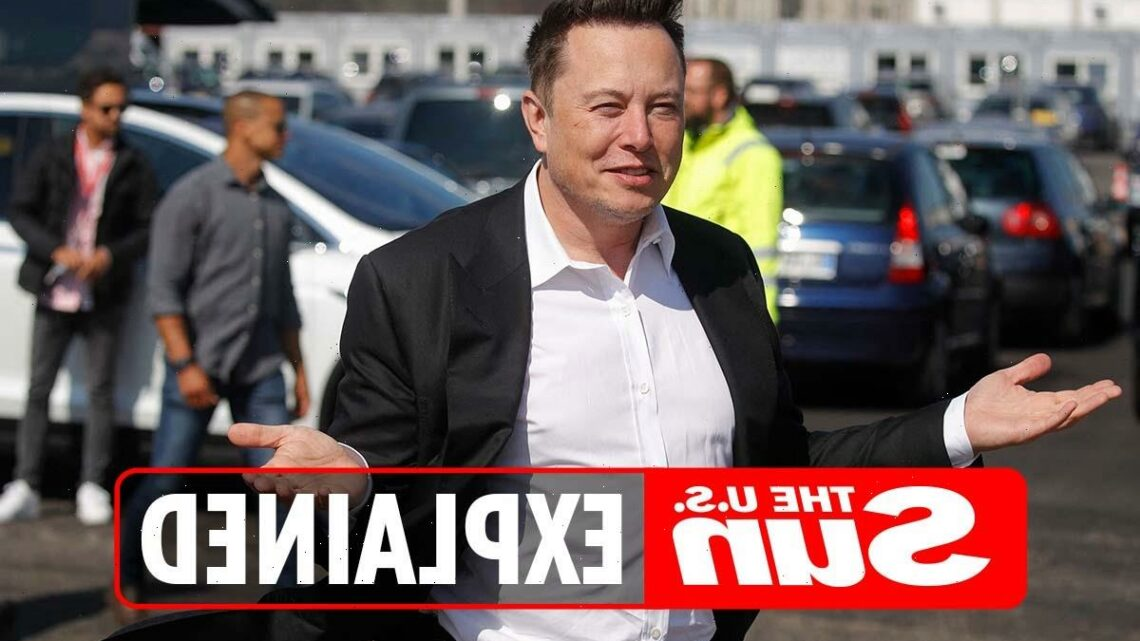 How many children does Elon Musk have? – The Sun