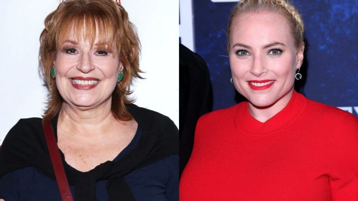 Meghan McCain and Joy Behar Not Talking to Each Other Following Heated Debate on 'The View'