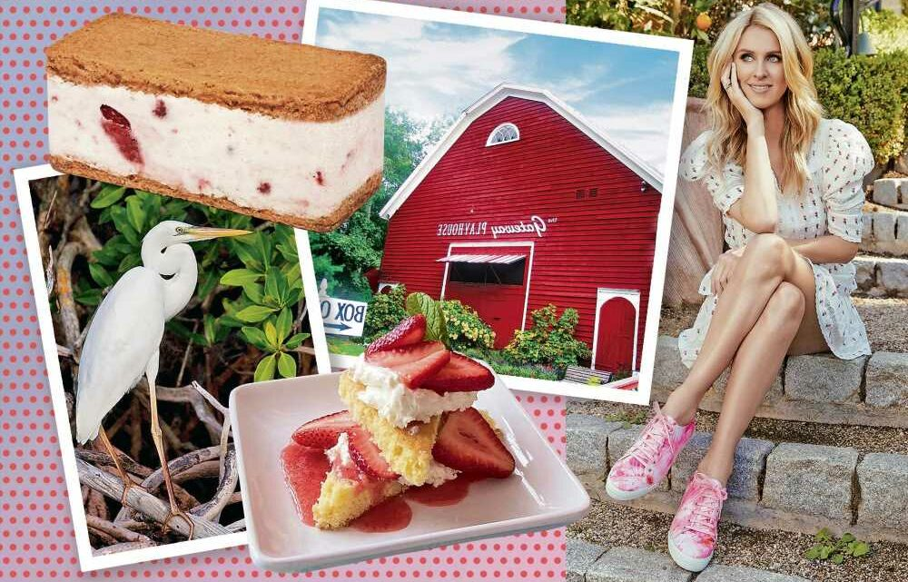 Nicky Hilton's guide to Bellport, NY: restaurants, shopping and more