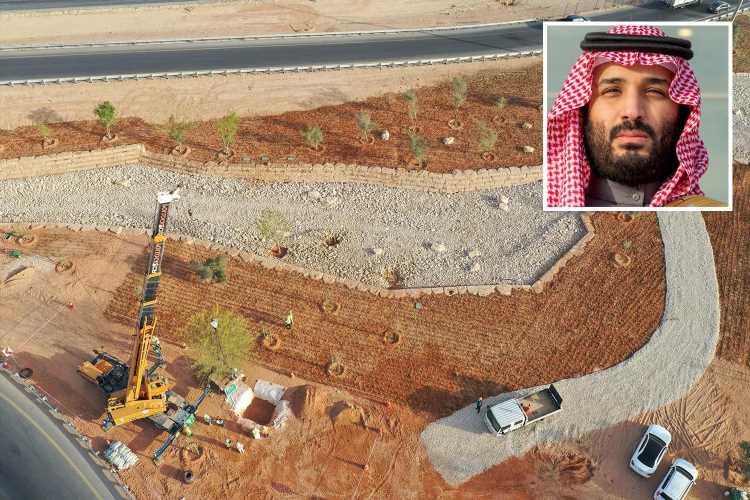 Saudi Arabia plans to plant 10 BILLION trees in the desert