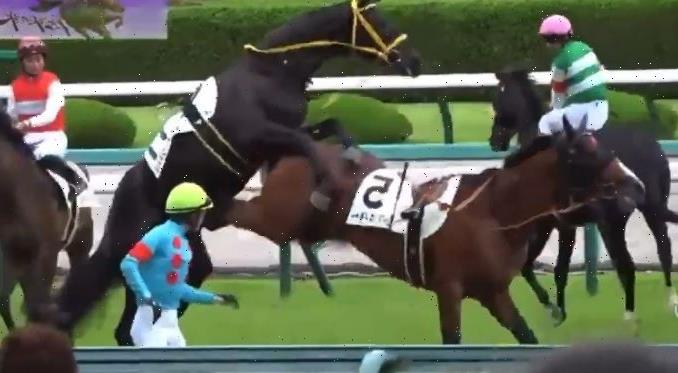 Astonishing moment randy racehorse tries to mount male rival in parade ring – before getting kicked in privates