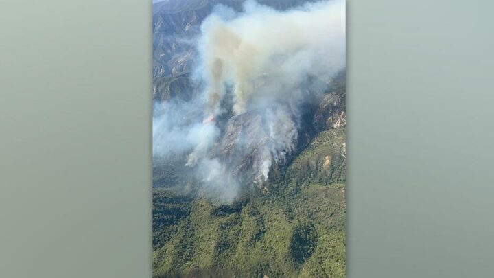 California's Willow Fire spreads to 2,000 acres as record drought, heat continue to grip state