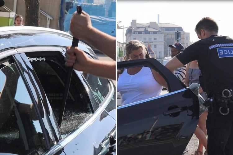 Cops rescue two dogs roasting in car in 24C heat as owner moans 'you've broke my window out'