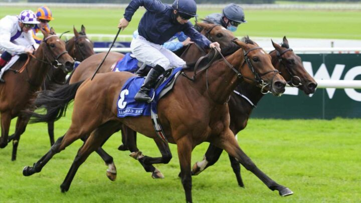 Divinely cut from massive 50-1 into just 8-1 as Aidan O'Brien confirms all five of his team set for Oaks at Epsom