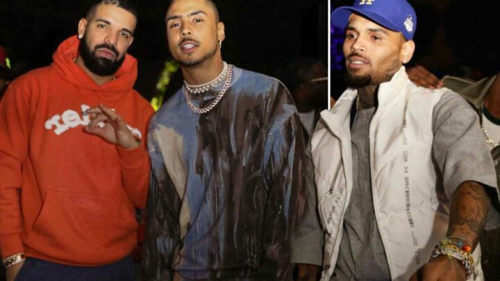 Former foes Drake and Chris Brown play nice at pal Quincy Brown's party