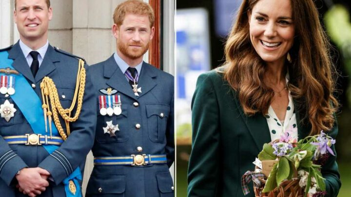 Kate 'trying to mediate' reconciliation between Harry and William, uncle says