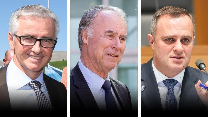 Liberal MPs suggest radical plans to tackle housing affordability crisis
