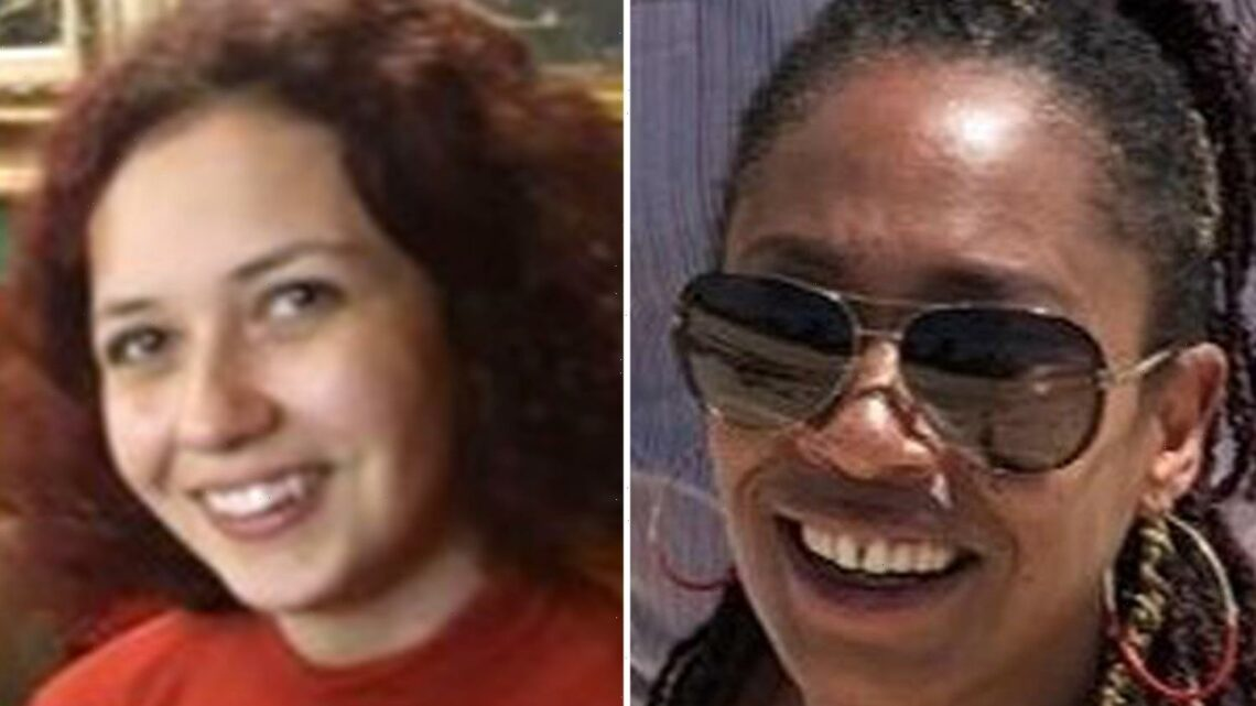 Piercing scream heard on night sisters were stabbed to death in park, court hears
