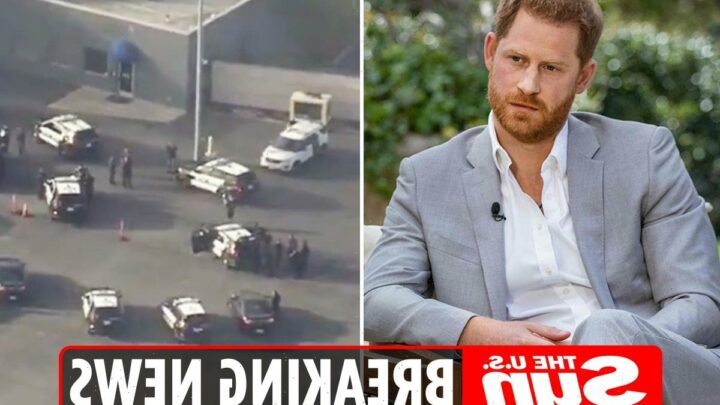 Prince Harry safety scare as cops chase car on LAX runway just as Duke arrives to fly to UK for Diana statue unveiling