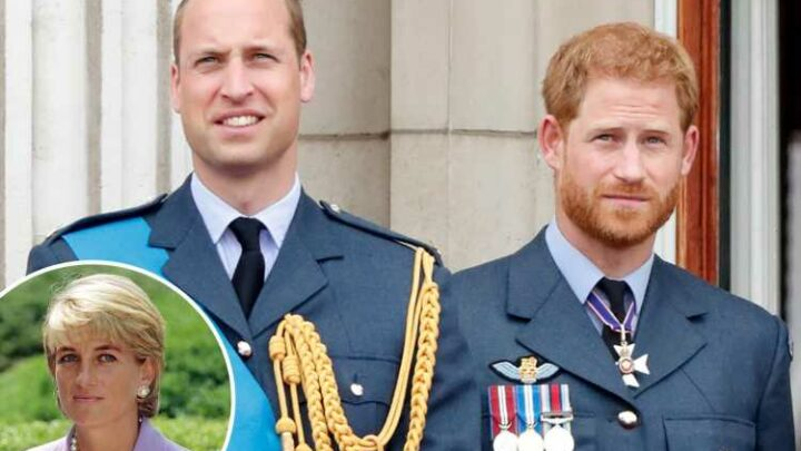 Prince William 'unlikely to admit any wrongdoing' to Prince Harry at Diana statue unveiling