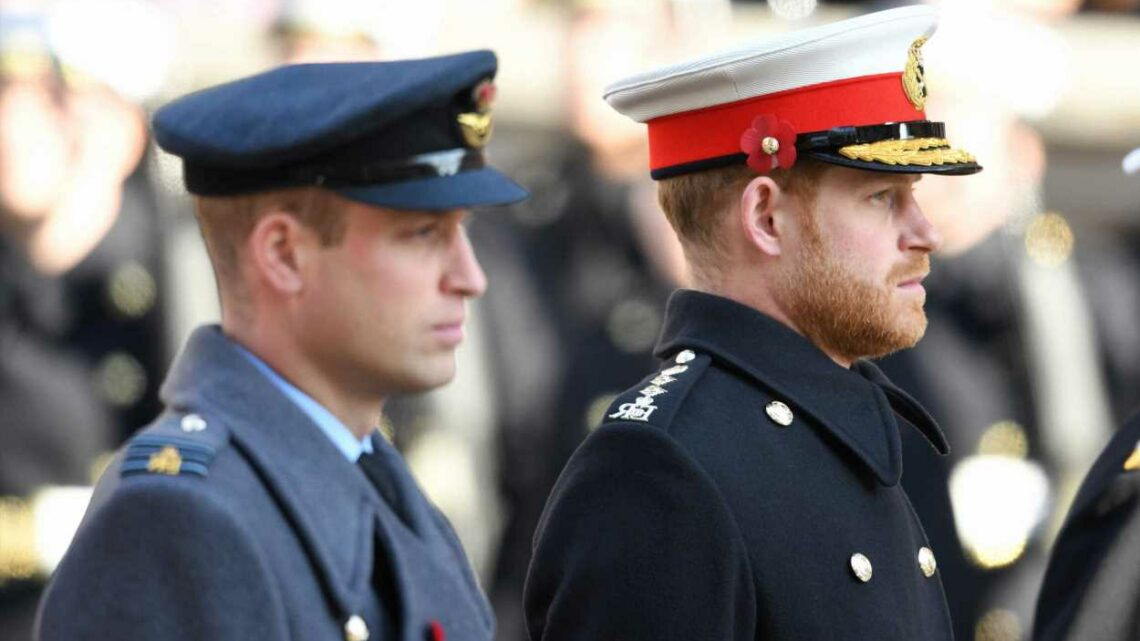 Princes William, Harry to hold private meeting after Diana statue unveiling