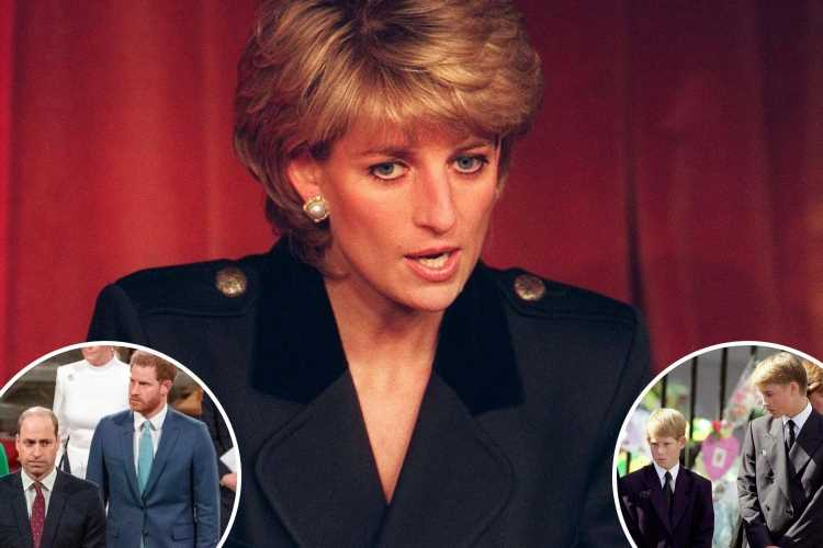 Princess Diana warned William and Harry to 'never fall out' and would've been 'devastated to see bond destroyed'