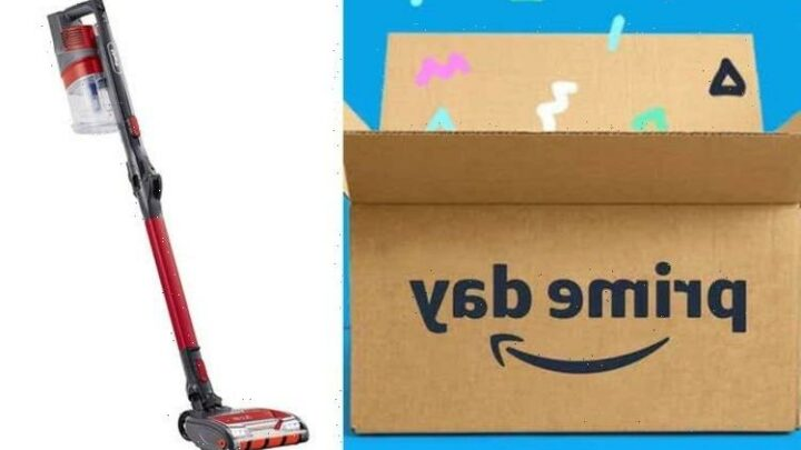 Shark cordless vaccum cleaner discounted by 50 percent off for Prime Day – 3 hours only
