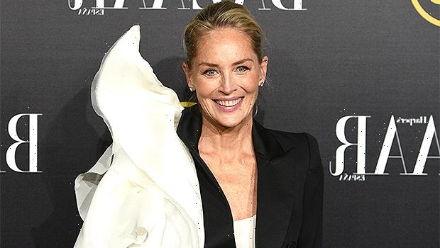 Sharon Stone, 63, Wears Nothing But A 'Basic Instinct' T-Shirt In Gorgeous New Photo