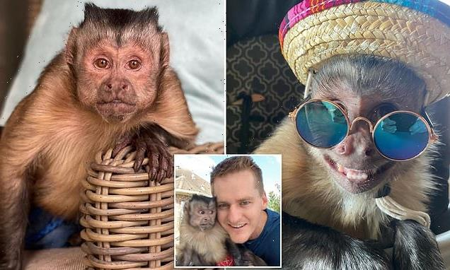 Social media users mourn pet monkey who died during vet visit