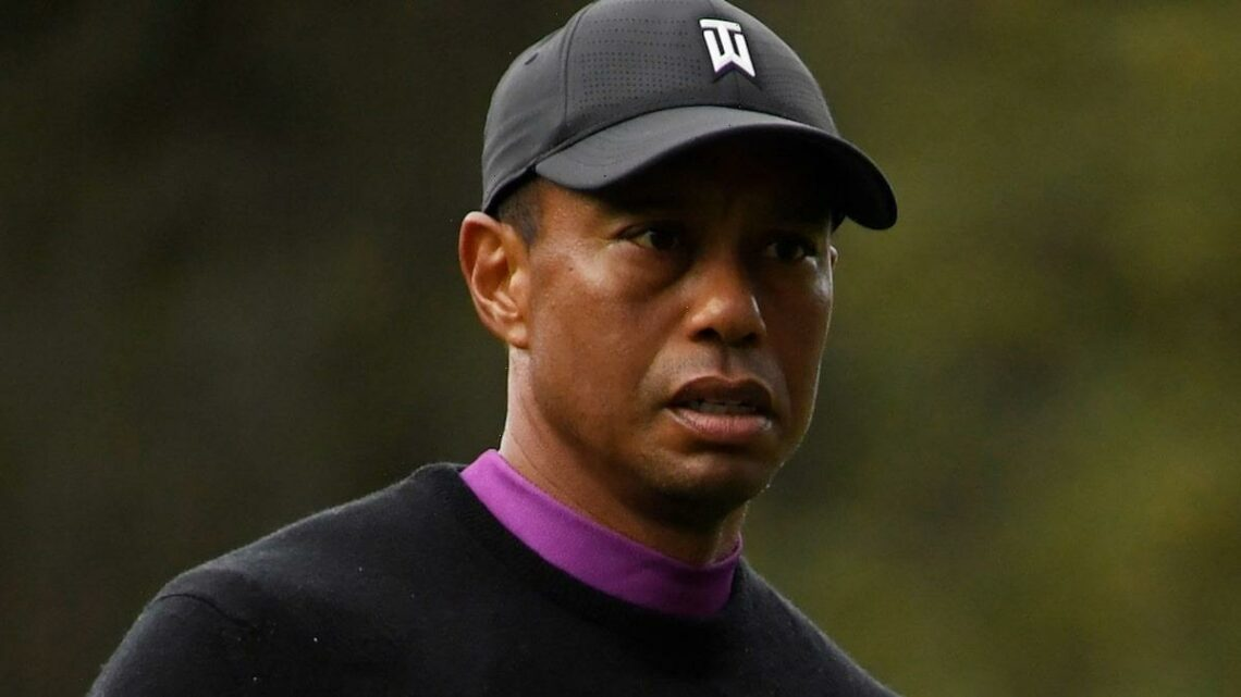 Tiger Woods Gets Rod, Screws and Pins to Repair Badly Damaged Leg, Doctors Confirm