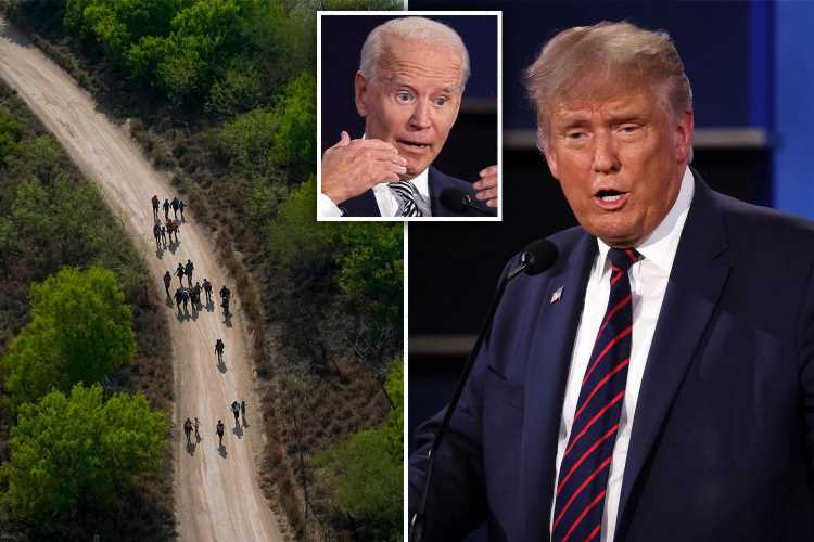 Trump says HE might visit 'totally open' border and claims 'rapists and murderers' are coming to US because of Biden