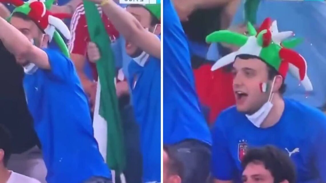 Watch brilliant moment Italy fan still appealed for a penalty even though he wasn't watching what happened