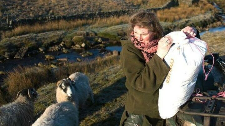 Our Yorkshire Farm: Why is Amanda Owen moving away from Ravenseat?