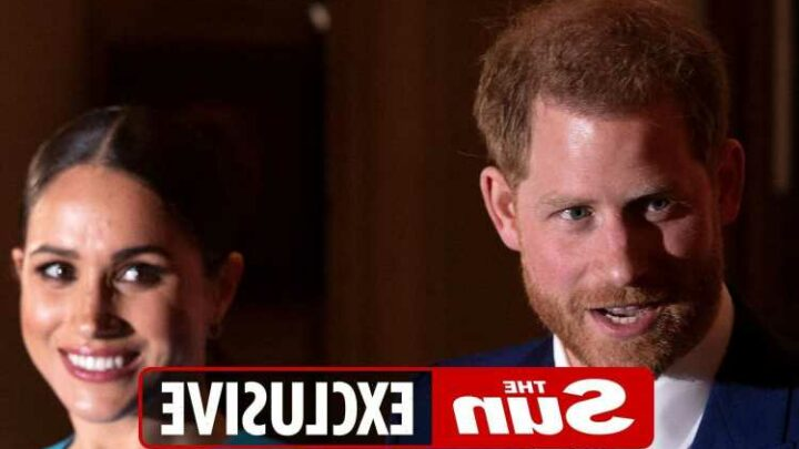 Prince Harry has 'gone rogue' with memoir with fears he could use book as 'leverage' against Royals