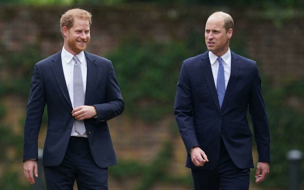 Prince William and Prince Harry Showed Signs of Reconciliation at Princess Diana's Statue Unveiling, Body Language Expert Says