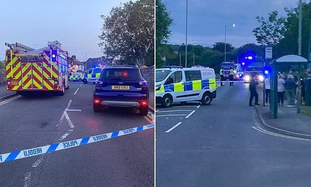 Several casualties feared as 'car crashes into pedestrians by pub'